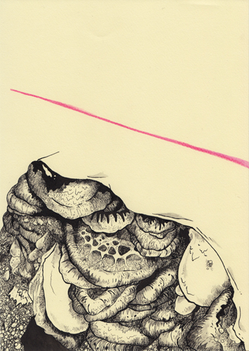 David Franklin artist Artwork Reclamation 11 Untitled Drawing